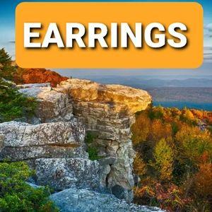 🦄 EARRINGS